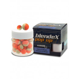 #1072 Haldorado-blendex-popup-big-carps-n-butric-acid-mango-600x800
