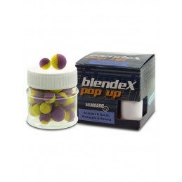 #1068 Haldorado_blendex_popup_big_carps_ananas_banan-600x800