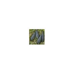 #2586 mistrall_green_silk_x8
